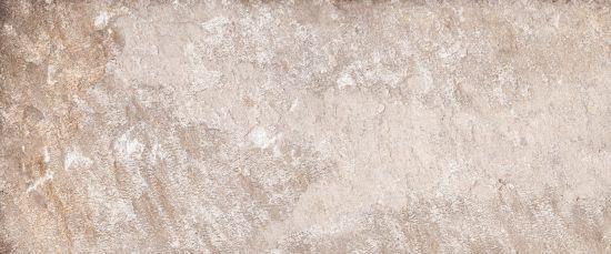 PLATINUM 1 25x60 - 10150